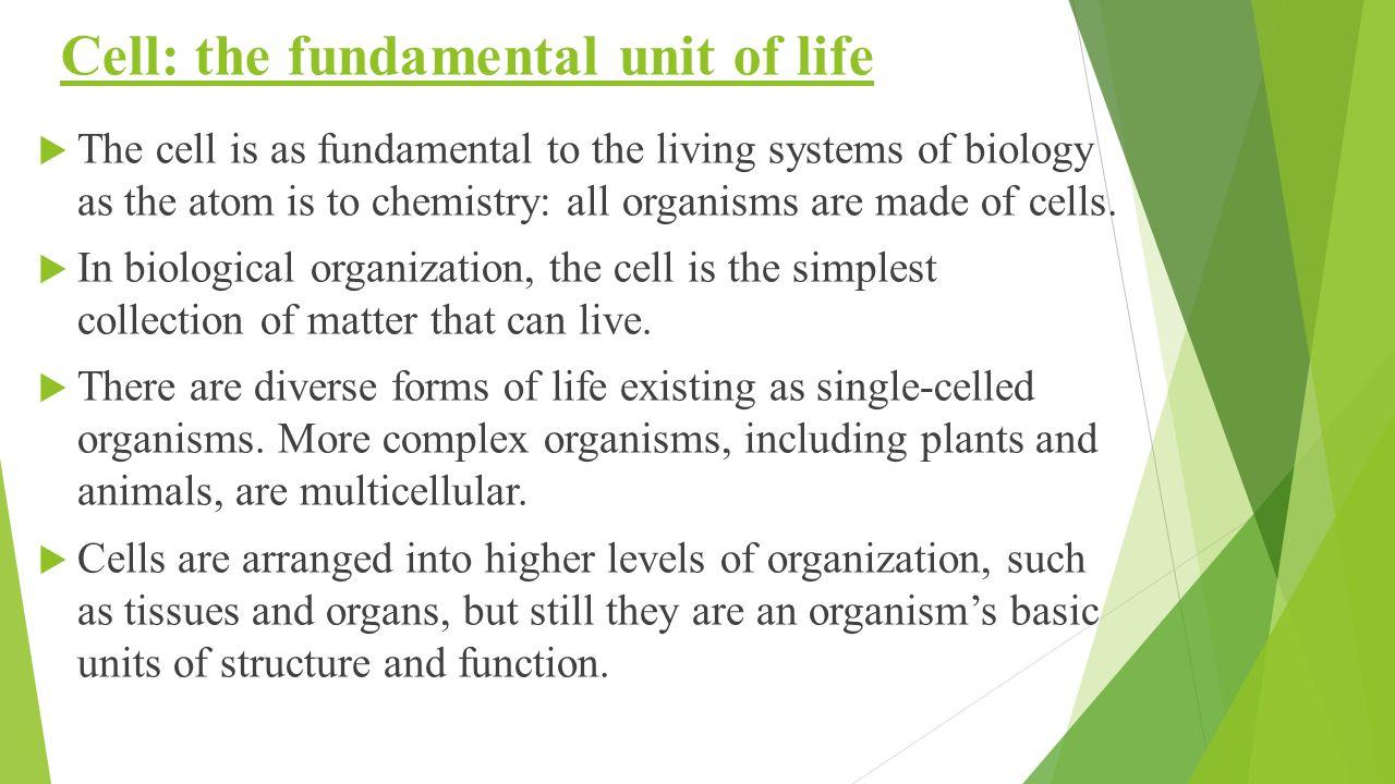 the fundamental unit of life Fundamental unit of life - authorstream presentation what are living organism made up of: what are living organism made up of all living organisms are made up of cells.