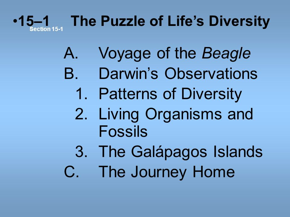 B. Darwin's Observations 1. Patterns of Diversity
