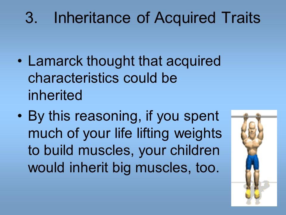 3. Inheritance of Acquired Traits