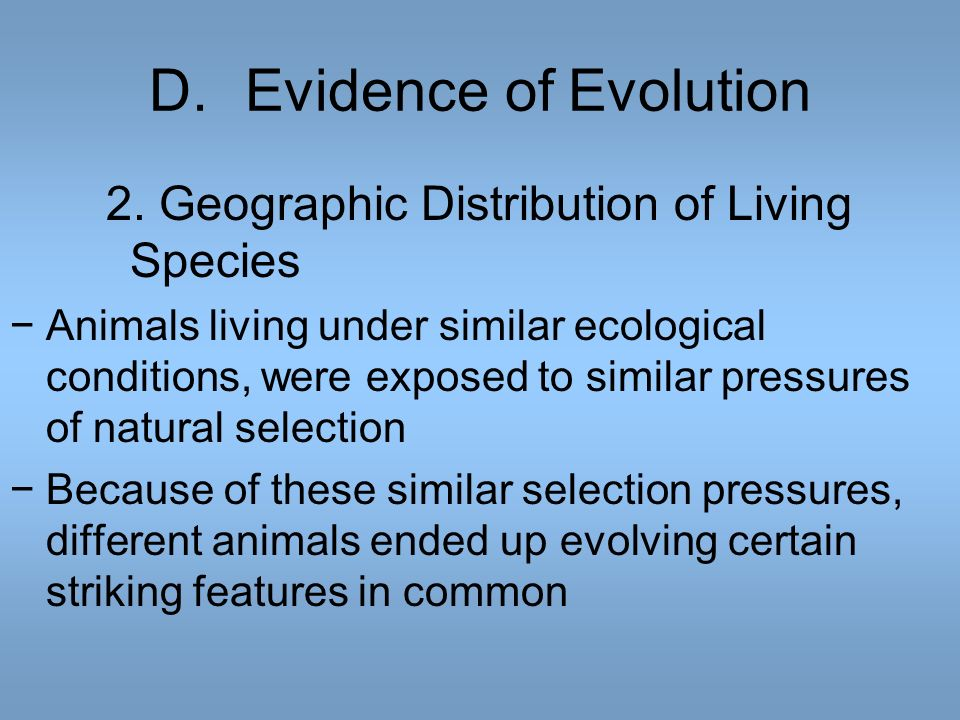 D. Evidence of Evolution