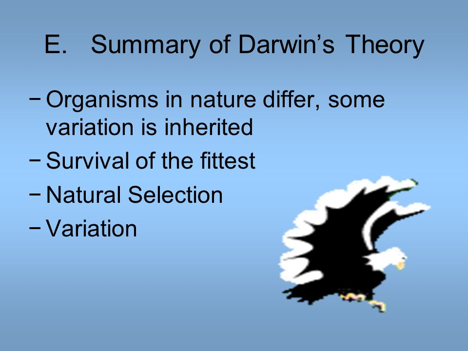 E. Summary of Darwin's Theory
