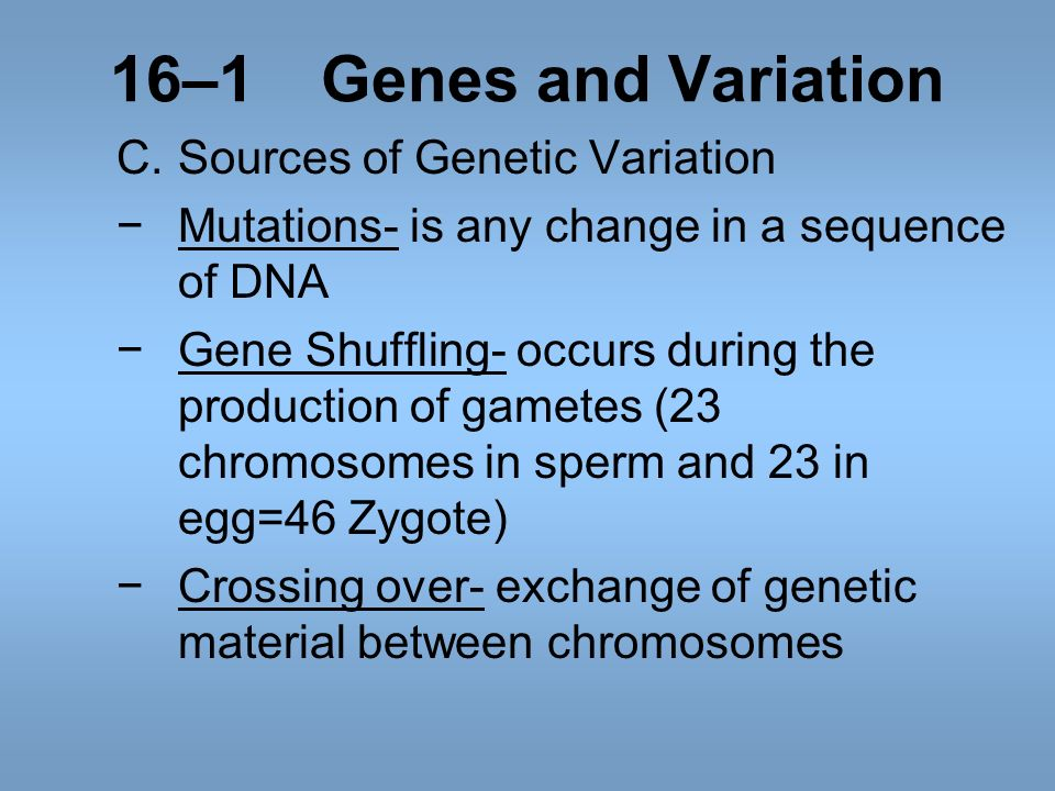 16–1 Genes and Variation C. Sources of Genetic Variation