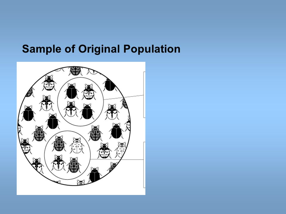Sample of Original Population