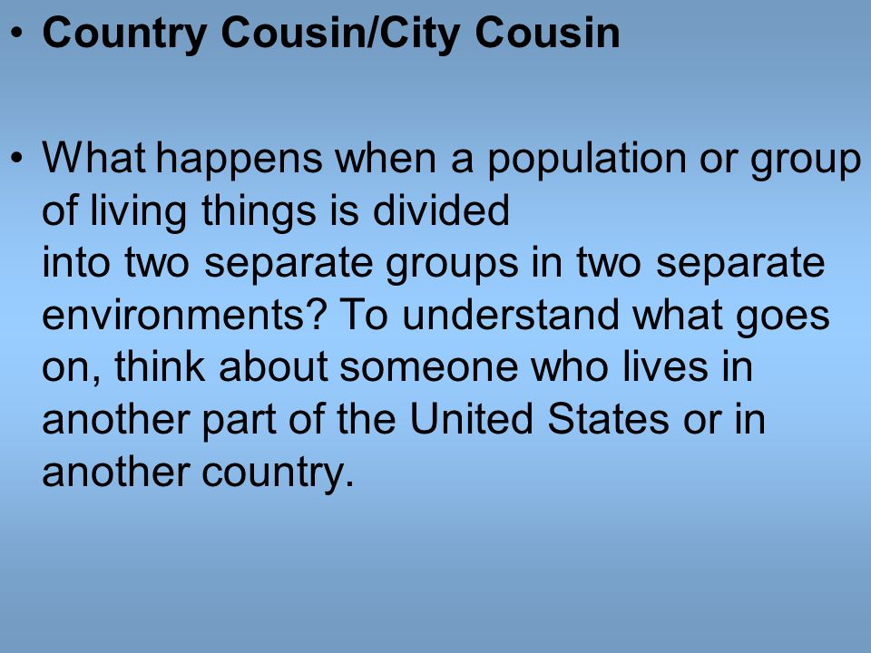 Country Cousin/City Cousin