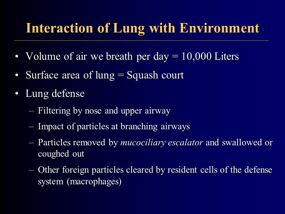 Interaction of Lung with Environment