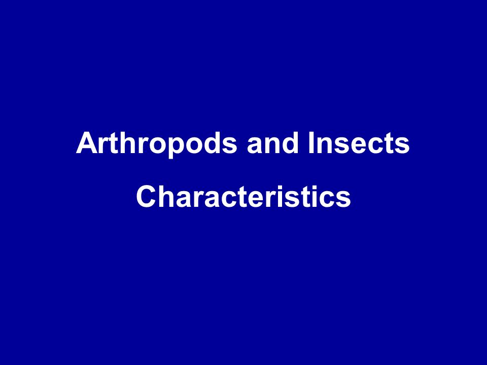 Arthropods and Insects