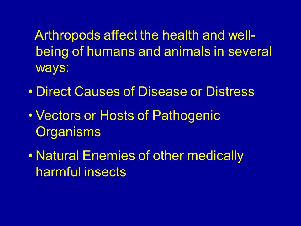 Arthropods affect the health and well-being of humans and animals in several ways: