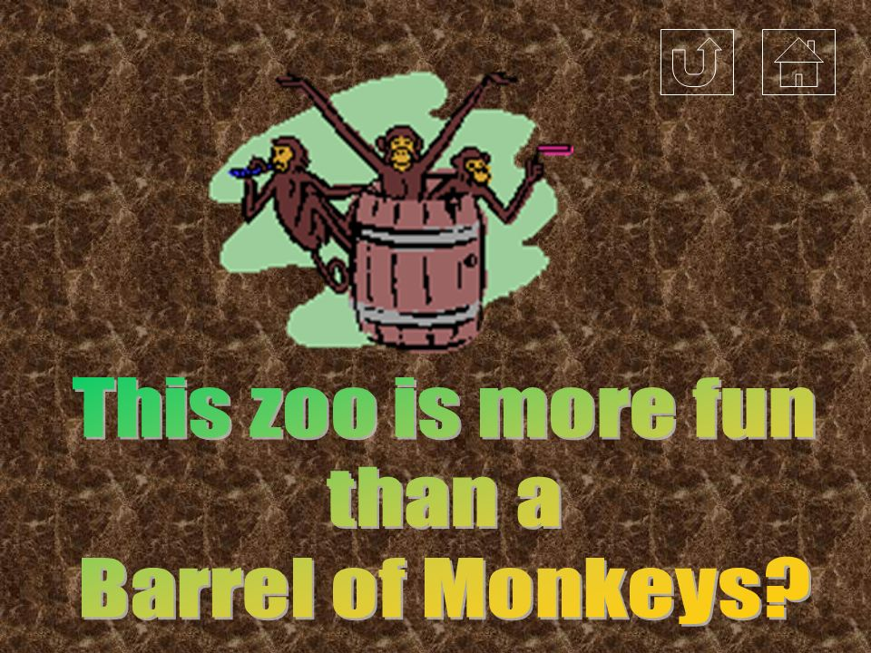 This zoo is more fun than a Barrel of Monkeys