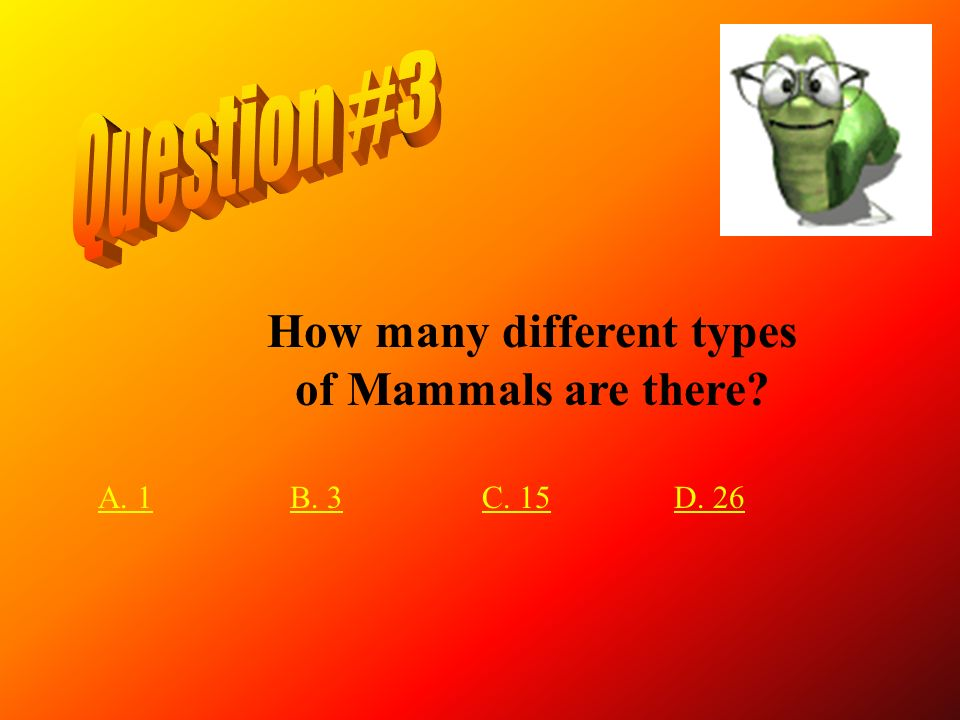 How many different types of Mammals are there