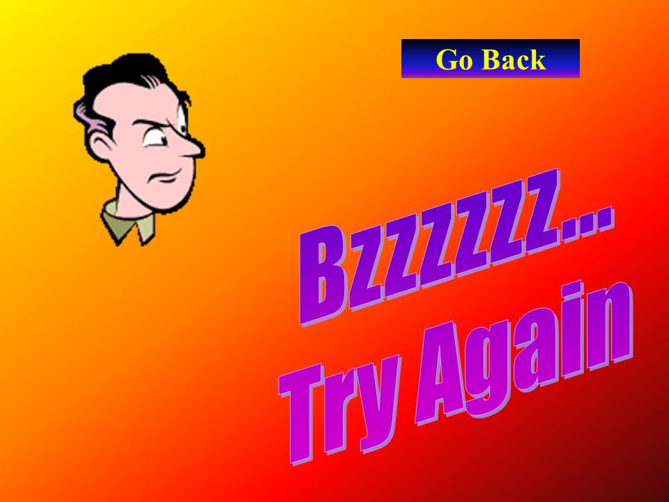 Go Back Bzzzzzz... Try Again