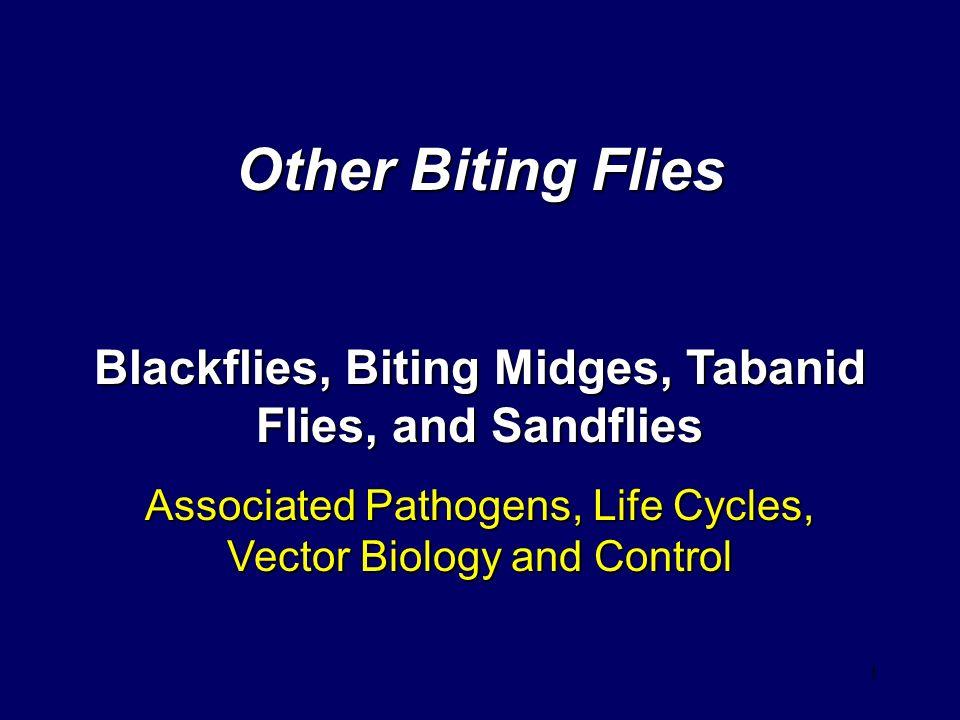 Other Biting Flies Blackflies, Biting Midges, Tabanid Flies, and Sandflies.