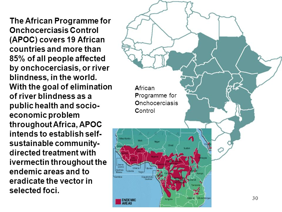 The African Programme for Onchocerciasis Control (APOC) covers 19 African countries and more than 85% of all people affected by onchocerciasis, or river blindness, in the world. With the goal of elimination of river blindness as a public health and socio-economic problem throughout Africa, APOC intends to establish self-sustainable community-directed treatment with ivermectin throughout the endemic areas and to eradicate the vector in selected foci.