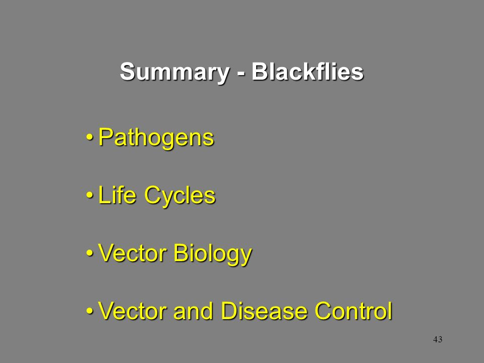 Summary - Blackflies Pathogens Life Cycles Vector Biology Vector and Disease Control
