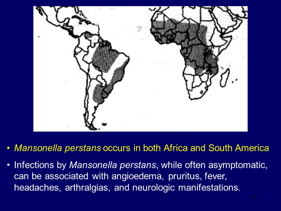 Mansonella perstans occurs in both Africa and South America