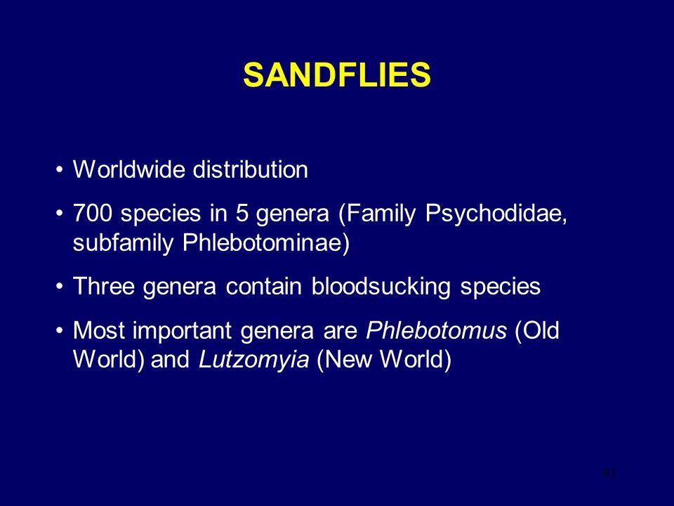 SANDFLIES Worldwide distribution