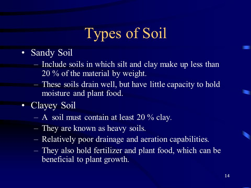 Types of Soil Sandy Soil Clayey Soil