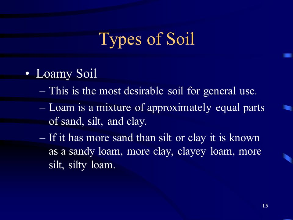 Types of Soil Loamy Soil