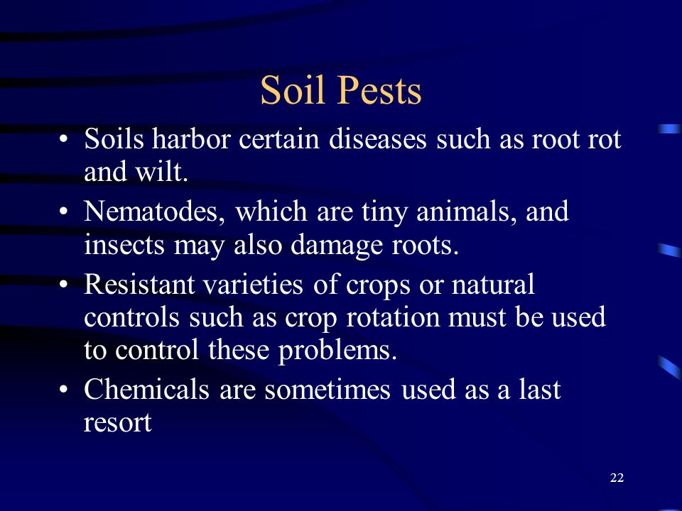 Soil Pests Soils harbor certain diseases such as root rot and wilt.