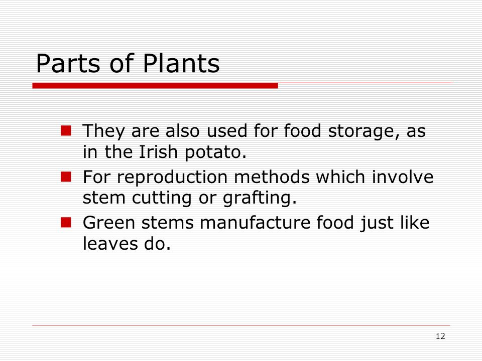 Parts of Plants They are also used for food storage, as in the Irish potato. For reproduction methods which involve stem cutting or grafting.
