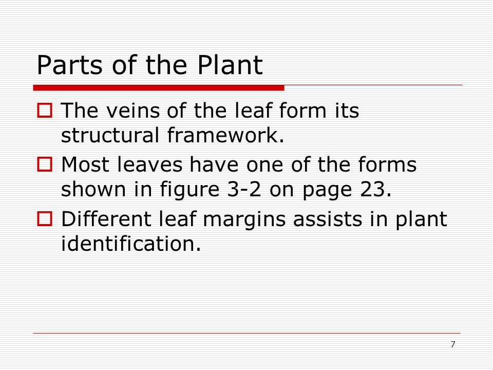 Parts of the Plant The veins of the leaf form its structural framework. Most leaves have one of the forms shown in figure 3-2 on page 23.