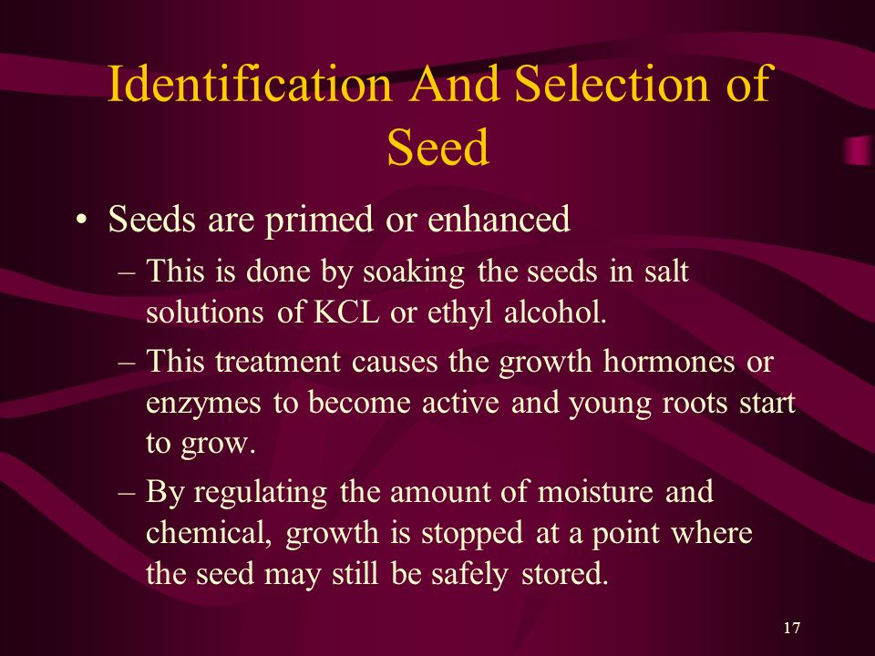 Identification And Selection of Seed