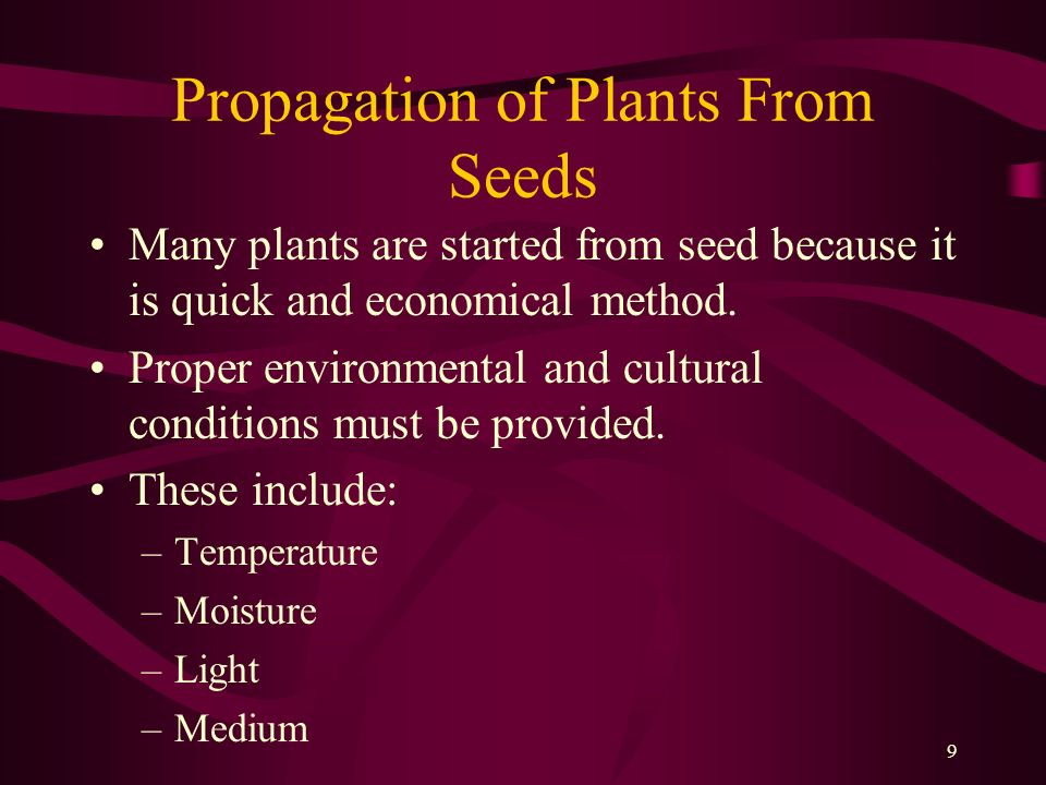 Propagation of Plants From Seeds