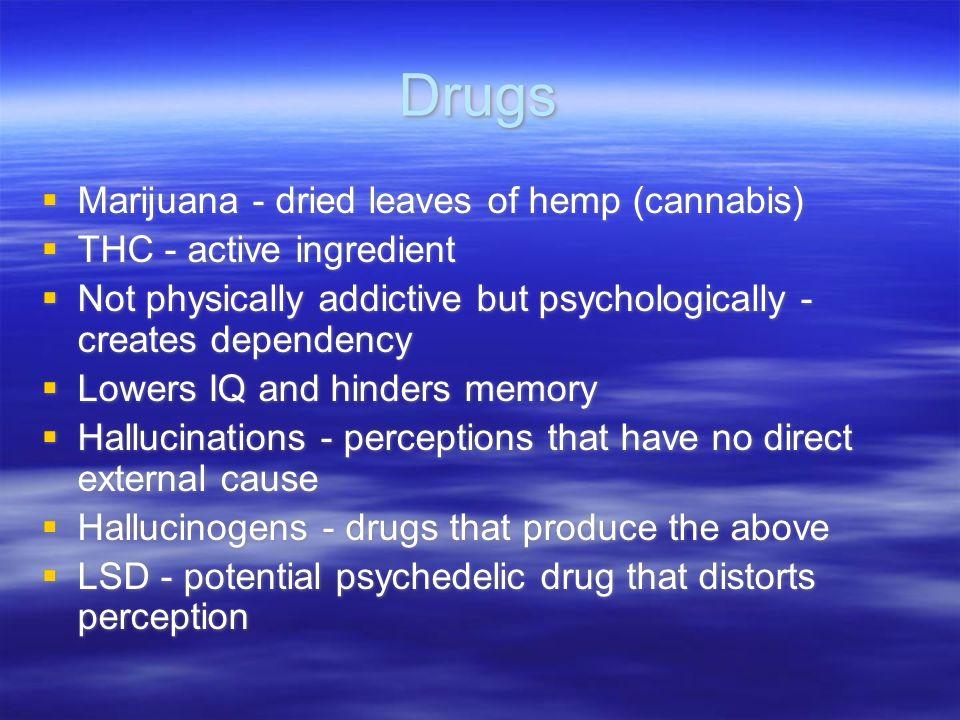 Drugs Marijuana - dried leaves of hemp (cannabis)