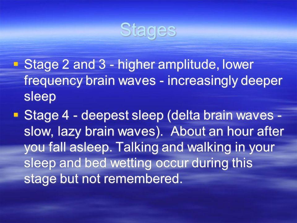 StagesStage 2 and 3 - higher amplitude, lower frequency brain waves - increasingly deeper sleep.