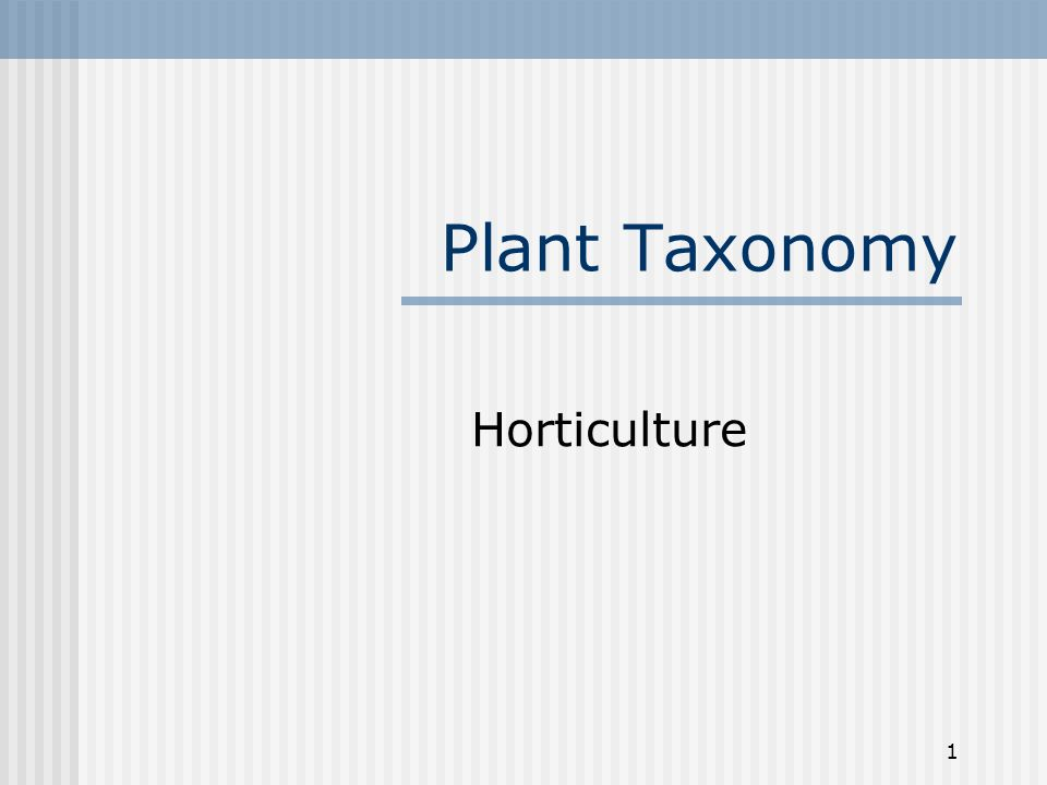 Plant Taxonomy Horticulture