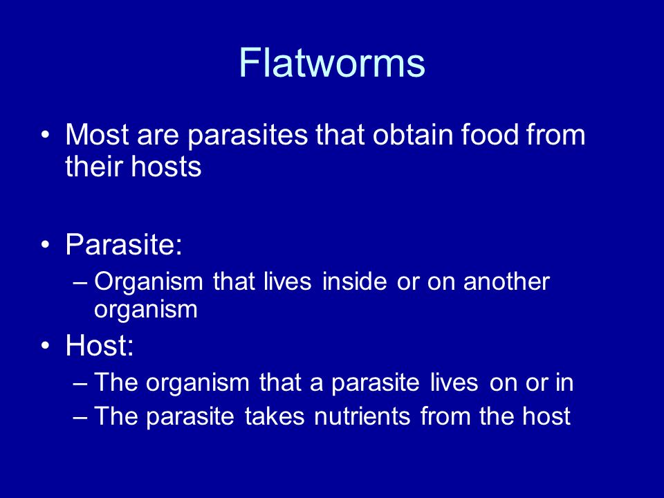 Flatworms Most are parasites that obtain food from their hosts