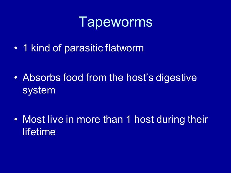 Tapeworms 1 kind of parasitic flatworm