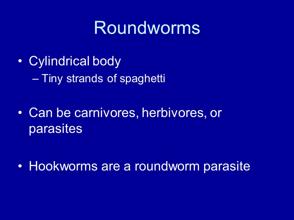 Roundworms Cylindrical body