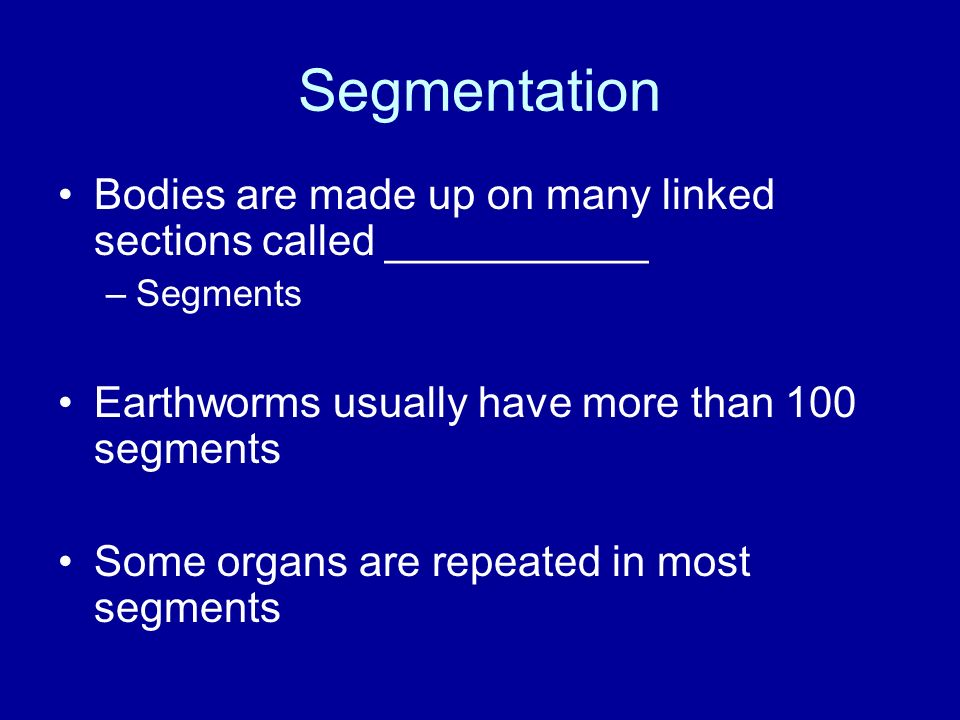 Segmentation Bodies are made up on many linked sections called ___________. Segments. Earthworms usually have more than 100 segments.