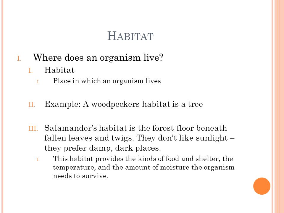 Habitat Where does an organism live Habitat
