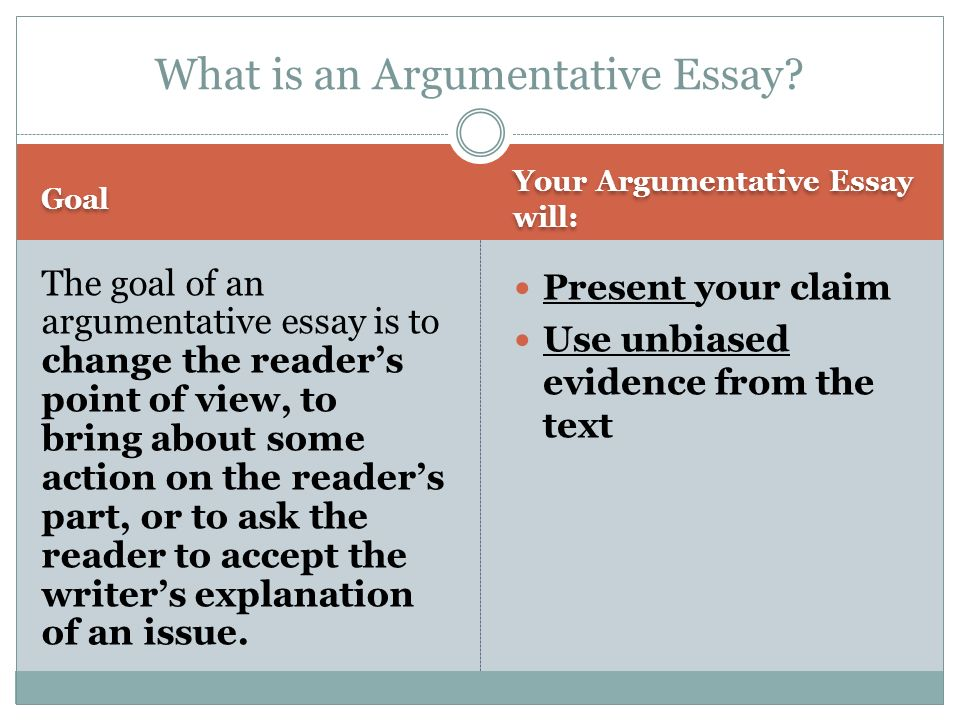 Argumentative essay writer