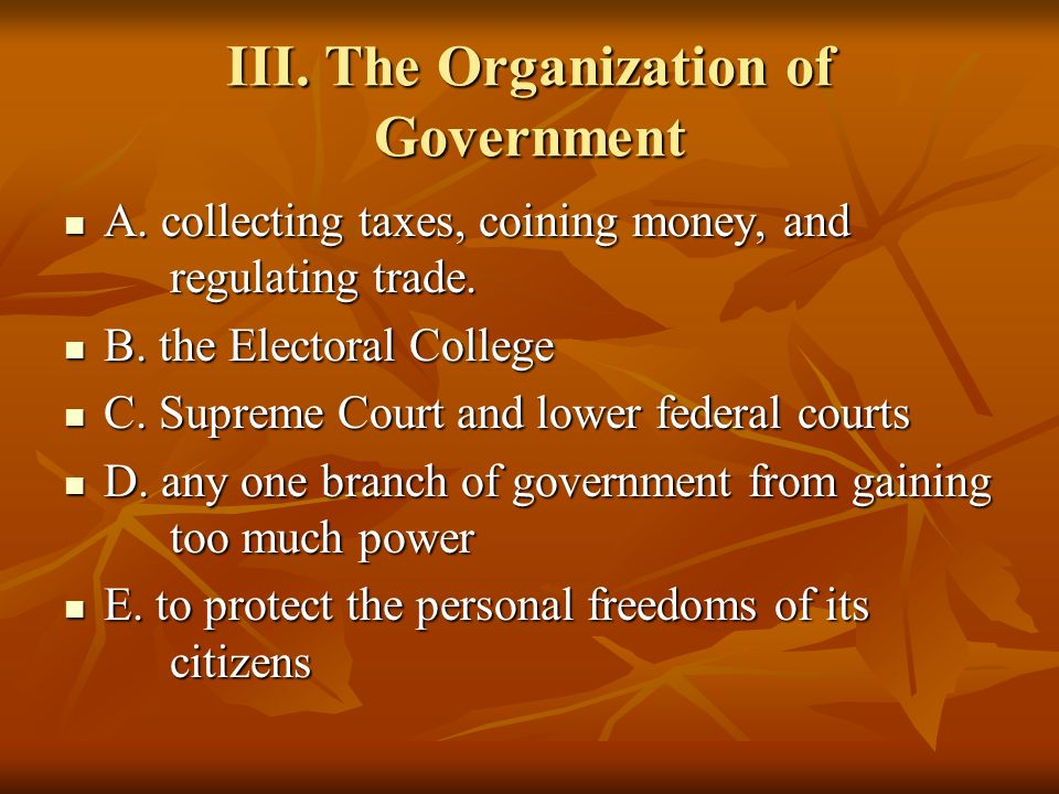 III. The Organization of Government