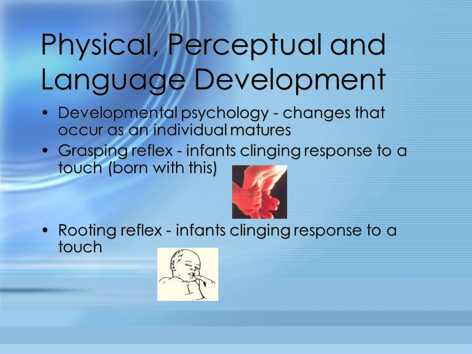 Physical, Perceptual and Language Development