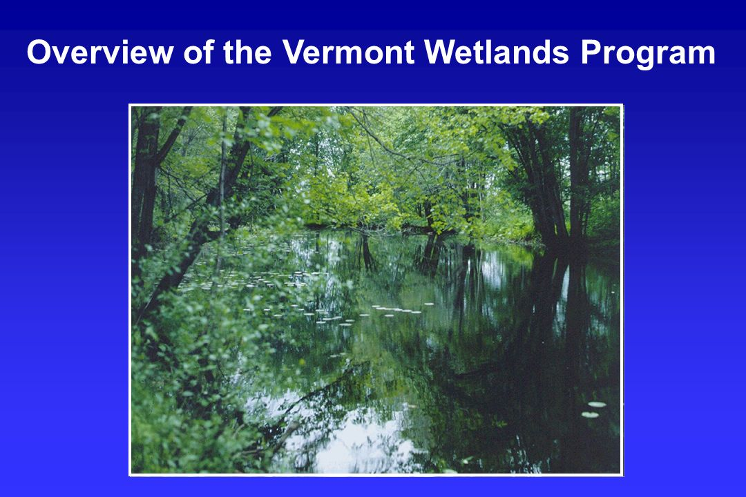 Overview of the Vermont Wetlands Program
