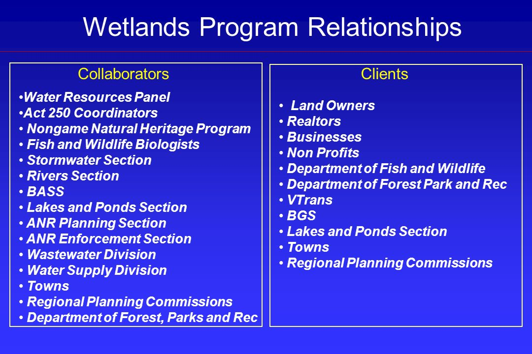 Wetlands Program Relationships