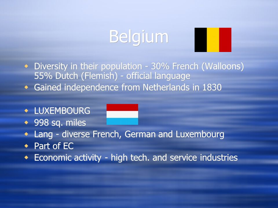 Belgium Diversity in their population - 30% French (Walloons) 55% Dutch (Flemish) - official language.