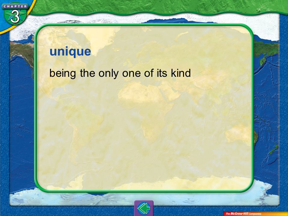 unique being the only one of its kind Vocab21