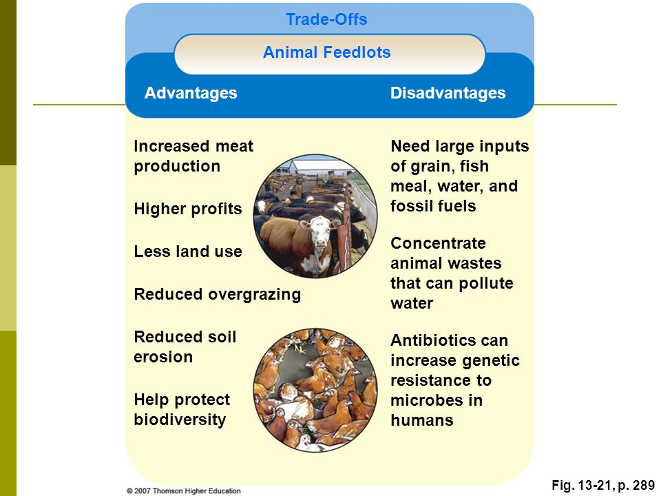 Food soil conservation and pest management ppt video for Fish antibiotics walmart