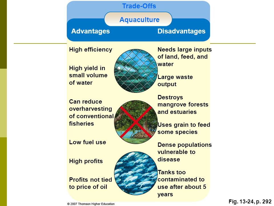 advantages and disadvantages of oil conservation Advantages of oil before diving into the benefits of different oil categories, let's sum-up main oil advantages: reduction of friction and wear.