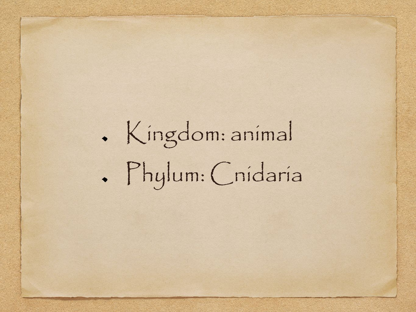 Kingdom: animal Phylum: Cnidaria