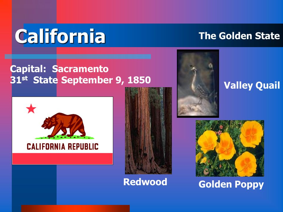 California The Golden State Capital: Sacramento