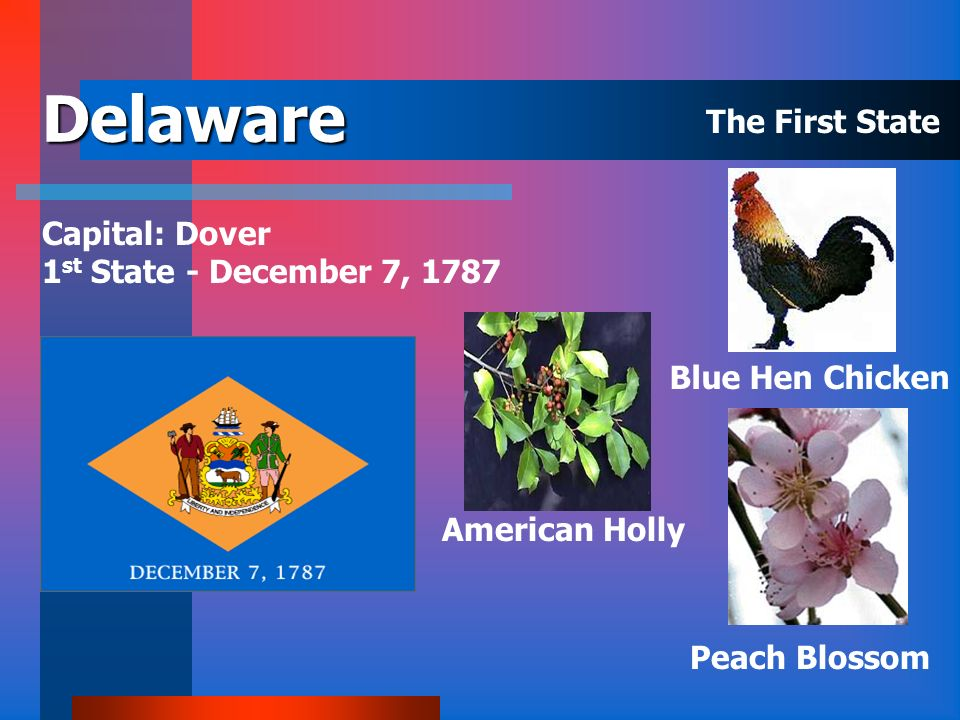 Delaware The First State Capital: Dover 1st State - December 7, 1787