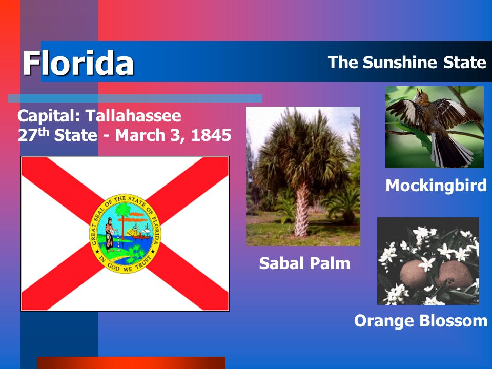 Florida The Sunshine State Capital: Tallahassee