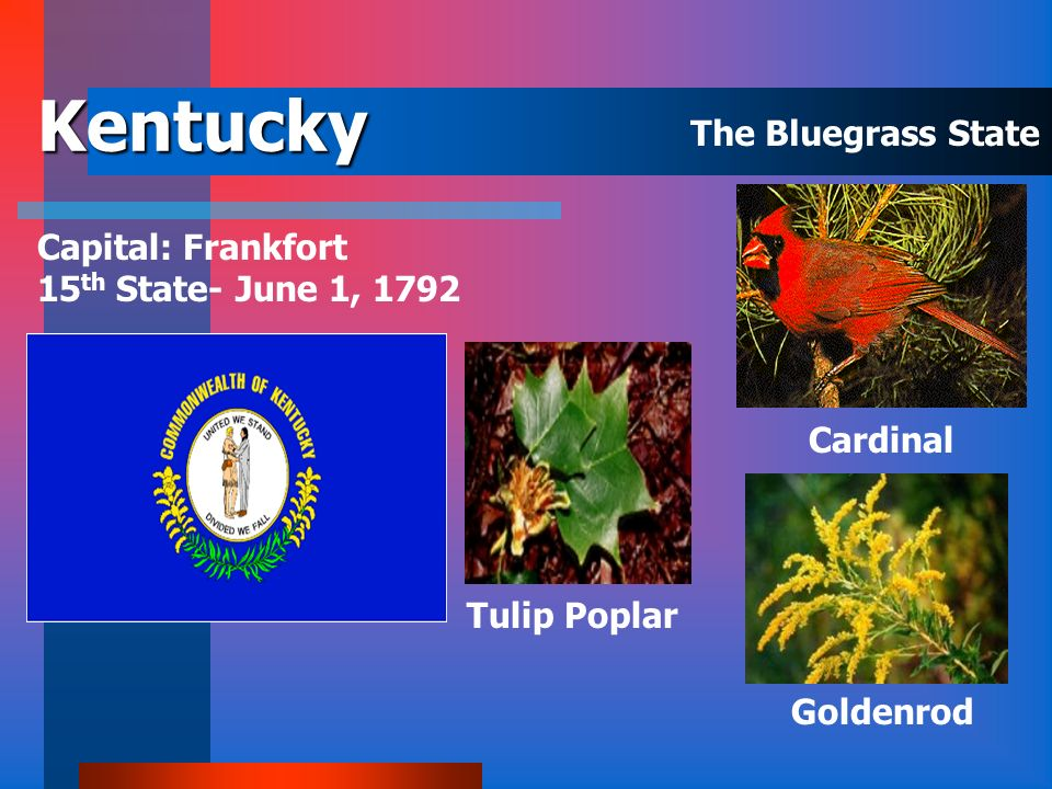 Kentucky The Bluegrass State Capital: Frankfort
