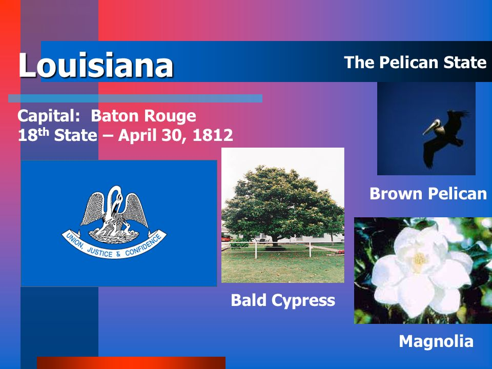 Louisiana The Pelican State Capital: Baton Rouge