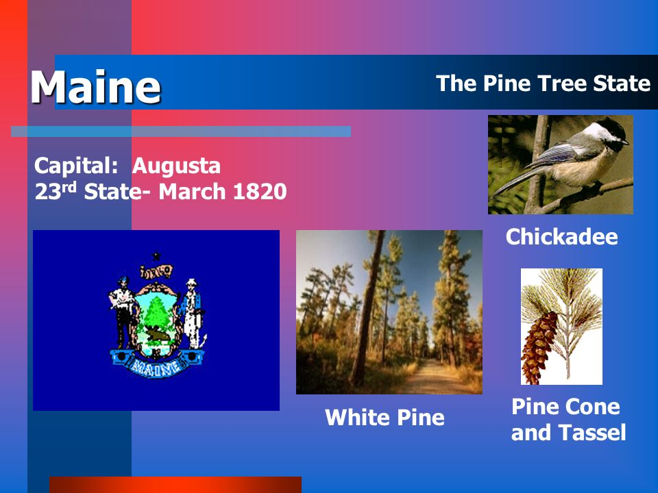 Maine The Pine Tree State Capital: Augusta 23rd State- March 1820